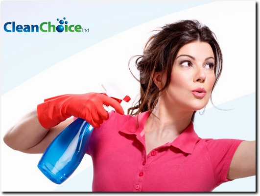 http://www.clean-choice.co.uk/ website